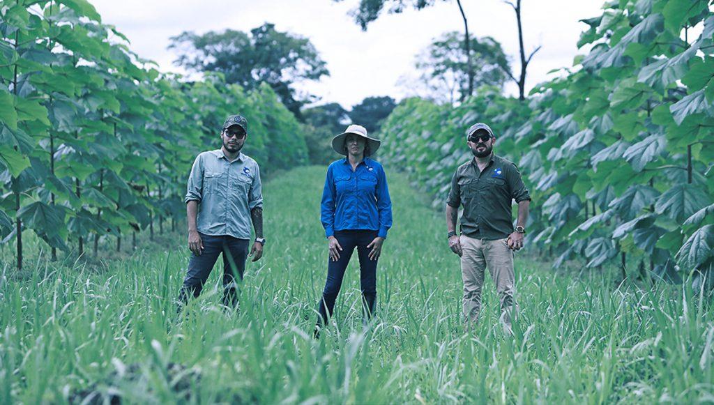 World Tree Team on sustainable farm
