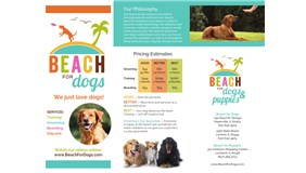 Beach For Dogs Image 1
