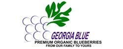Georgia Blue  Logo
