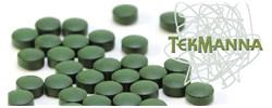TekManna Logo
